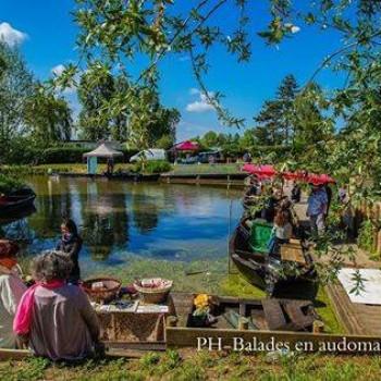 Patrimoine : le marché sur l'eau de Clairmarais (lien VIDEO)